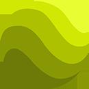Olive Oil Sommelier Registry